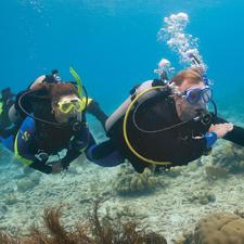 Adventure Dives